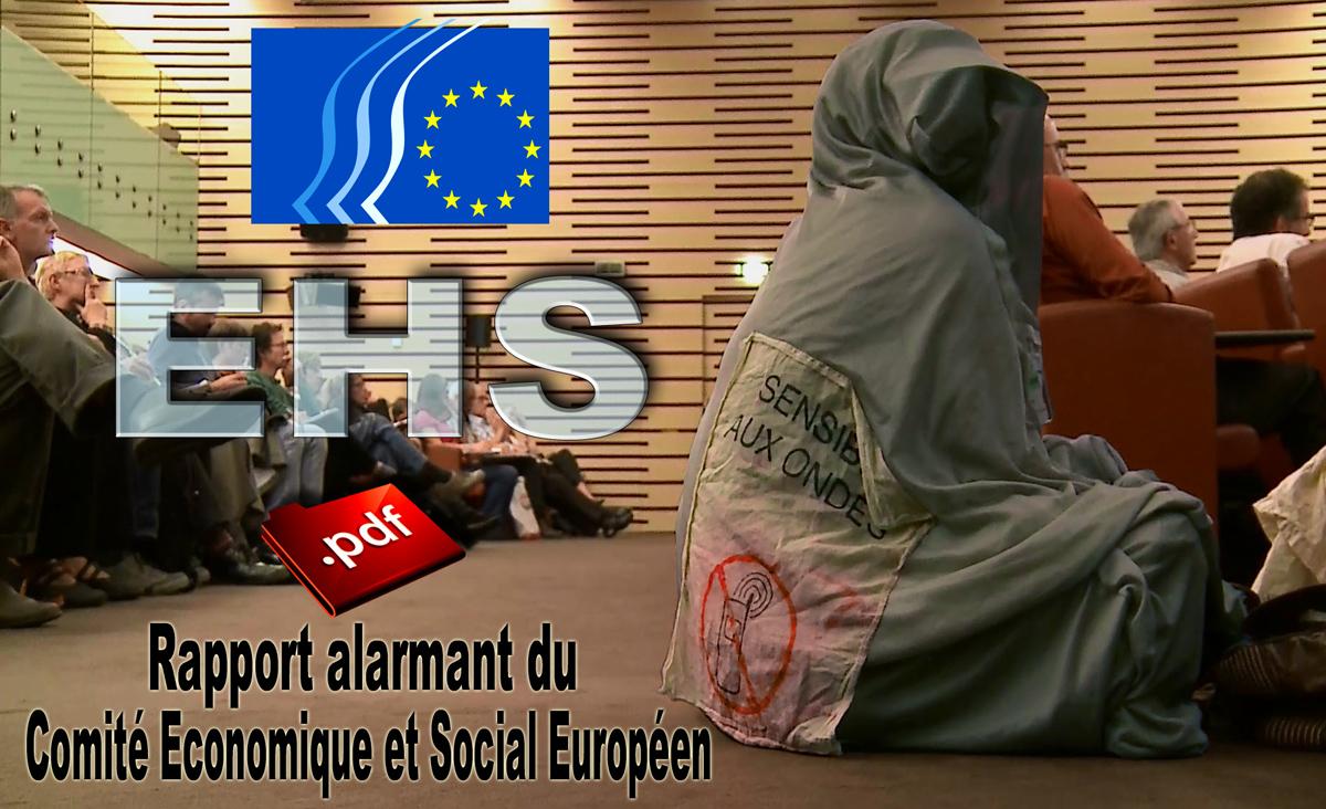 http://next-up.org/images/EHS_Rapport_Comite_Economique_et_Social_Europeen_1200_28_11_2014.jpg